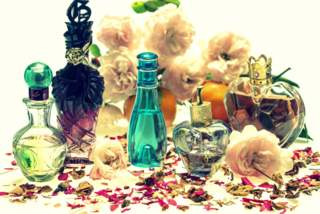 flavor and fragrance