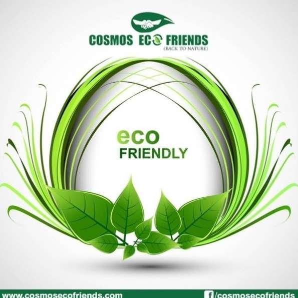 Cosmos Eco Friends